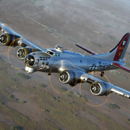 Look To The Skies:  WWII Airplanes Fly Again